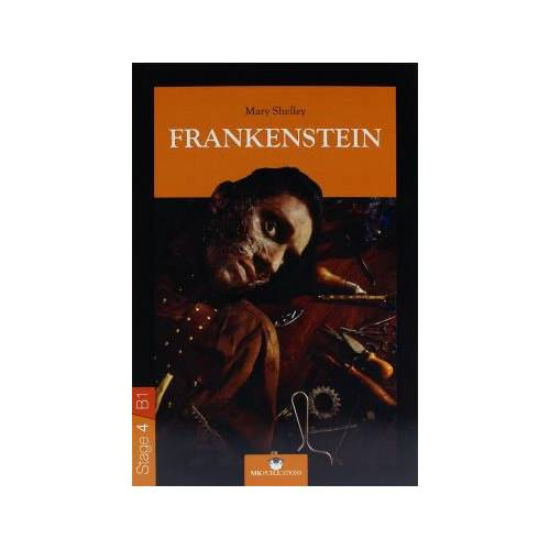 frankenstein by mary shelley with figurative language Struggling with themes such as language and communication in mary shelley's frankenstein we've got the quick and easy lowdown on it here.